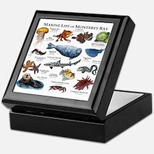 Marine Life of Monterey Bay Keepsake Box