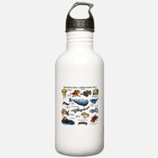 Marine Life of Montere Water Bottle