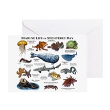 Marine Life of Monterey Bay Greeting Card