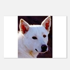 canaan dog Postcards (Package of 8)