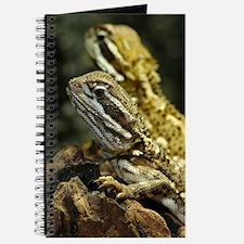 Bartagame Exotic Animal Journal