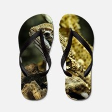 Bartagame Exotic Animal Flip Flops