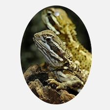Bartagame Exotic Animal Oval Ornament
