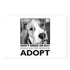Adopt Puppy Postcards (Package of 8)
