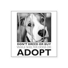 Adopt Puppy Sticker