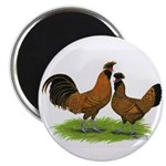 Gold Brabanter Chickens Magnet