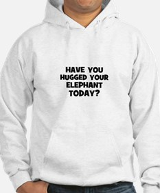 have you hugged your elephant Hoodie