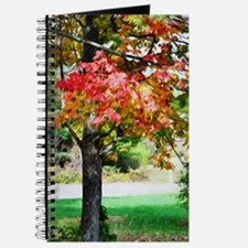 3 colors of the nature  Journal