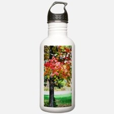 3 colors of the nature Water Bottle