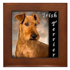 Irish Terrier Framed Tile