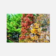 3 colors of the nature Rectangle Magnet