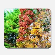 3 colors of the nature Mousepad