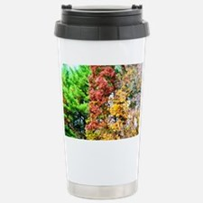 3 colors of the nature Stainless Steel Travel Mug
