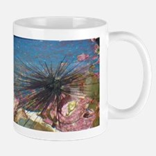Sea Urchin Mugs