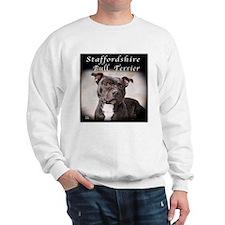 Staffordshire Bull Terrier Jumper