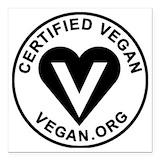 Vegan Square Car Magnets