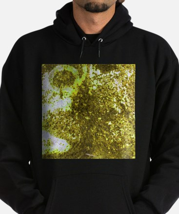 Yellow rusted surface texture Hoodie