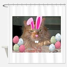 Easter Orange Tabby Cat Shower Curtain