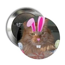 """Easter Orange Tabby Cat 2.25"""" Button (100 pack)"""