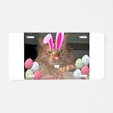 Easter Orange Tabby Cat Aluminum License Plate