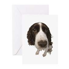 Springer Spaniel Close-Up Greeting Cards (Pk of 10