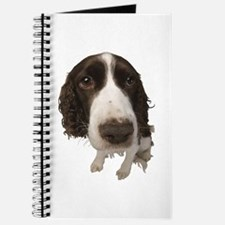 Springer Spaniel Close-Up Journal