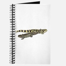Tiger Salamanders Journal