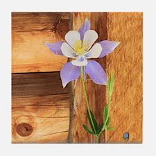 Columbine and Wood Tile Coaster