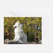 Fall Samoyed Greeting Card