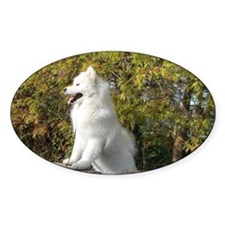 Fall Samoyed Decal