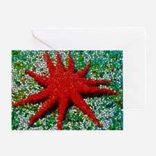 Stained Glass Starfish Greeting Card