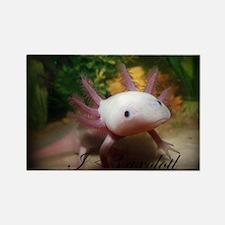 I <3 Axolotl Magnets