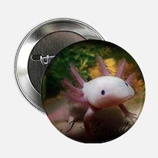 """I <3 Axolotl 2.25"""" Button"""