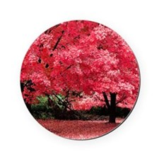 Tree Cork Coaster