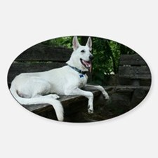 White Shepherd on a bench. Decal
