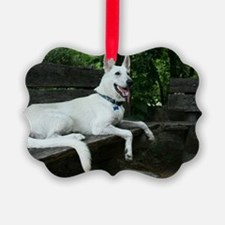 White Shepherd on a bench. Picture Ornament