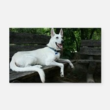 White Shepherd on a bench. Rectangle Car Magnet