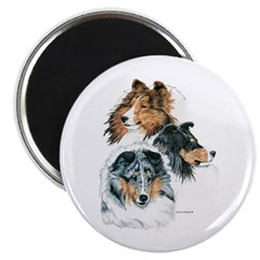 "Sheltie Portraits 2.25"" Magnet (10 pack)"
