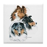 Sheltie Drink Coasters