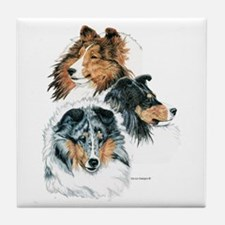 Sheltie Portraits Tile Coaster