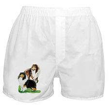 Sheltie Paintings Boxer Shorts
