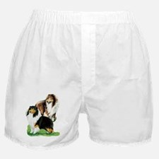 Sheltie Paintings Boxer Shorts