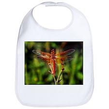 Dragonfly 1 Bib