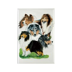 Sheltie Group Rectangle Magnet (10 pack)