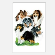 Sheltie Group Postcards (Package of 8)