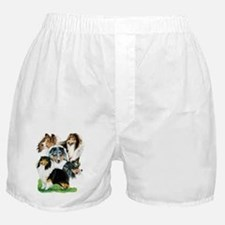 Sheltie Group Boxer Shorts