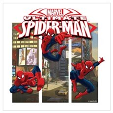 Spiderman Wall Art Canvas Art