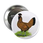 Gold Brabanter Hen 2.25