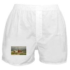 Wild Horses on the Run Boxer Shorts