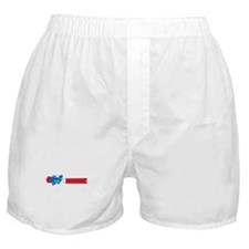 Airplane Banner Boxer Shorts